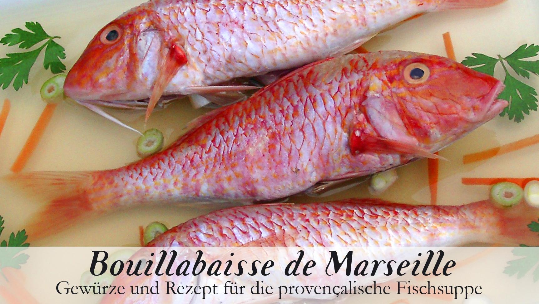 Bouillabaisse de Marseille